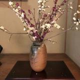 今週の植物54